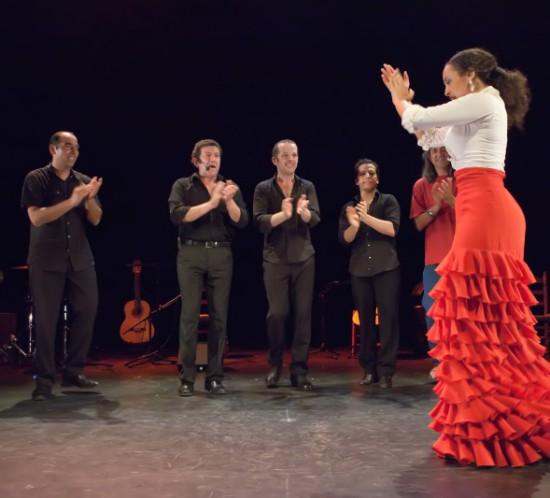 Flamenco-y-puro-304-800x533